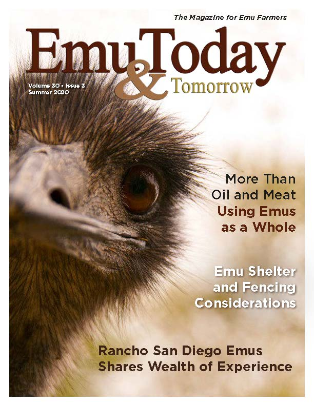 Emu Today & Tomorrow Magazine Cover for Summer 2020