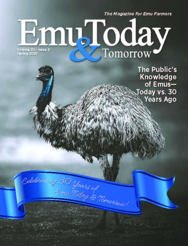 Cover of the Spring 2021 issue of ET&T